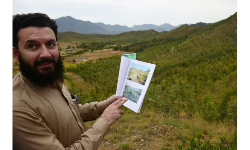 Pervaiz Manan, head of the Khyber Pakhtunkhwa forest department, shares pictures of the site previously, when only sparse blades