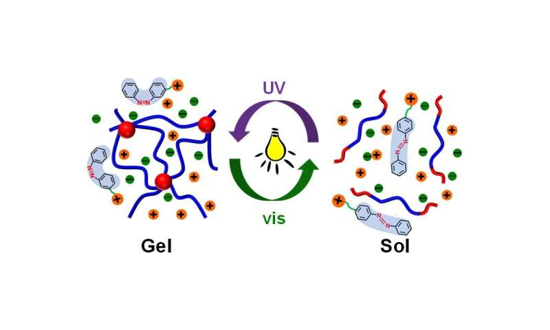 Photoreversible molecular switch changes the physical property of thermoresponsive polymer