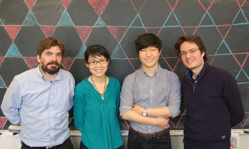 Physicists discover new quantum electronic material