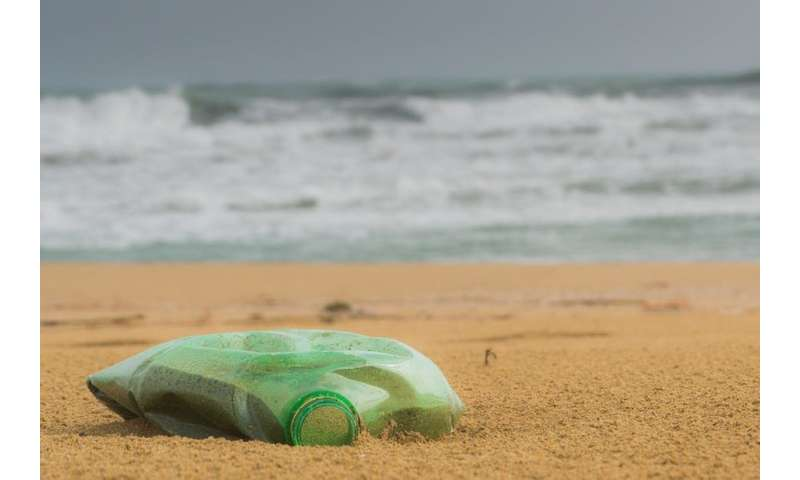 Plastics in oceans are mounting, but evidence on harm is surprisingly weak