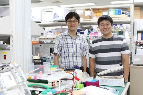 Potential drug to cure ciliopathies