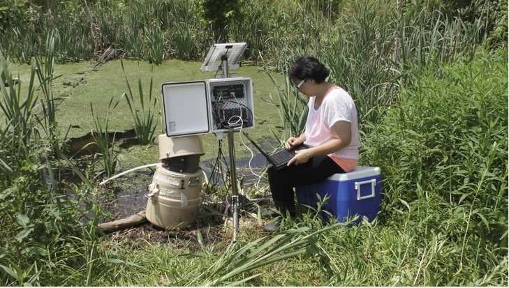 Presence, persistence of estrogens in vernal pools an emerging concern
