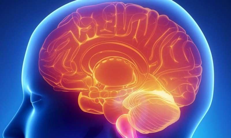 Protecting against brain injuries