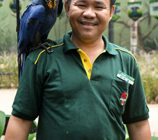 Razali Bin Mohamad Habidin communicates with the birds through grunts, gestures and body languages and said he recognises the bi