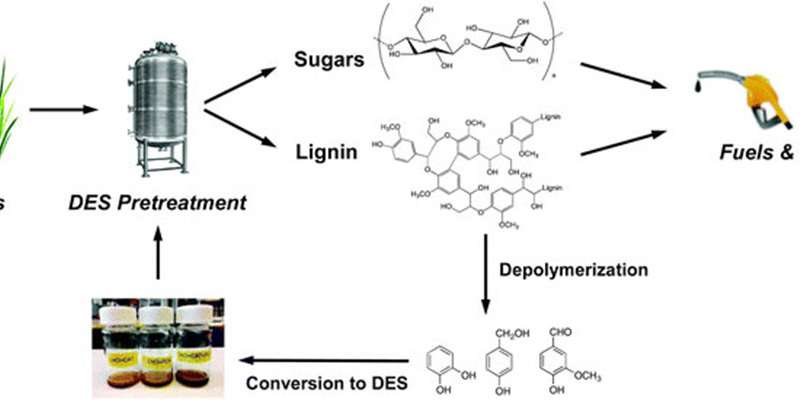 Renewable solvents derived from lignin lowers waste in biofuel production