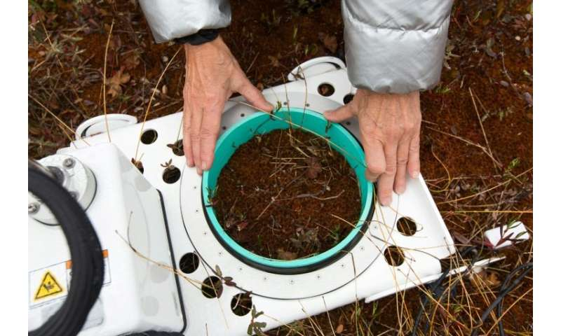 Researcher Michelle Garneau from the University of Quebec in Montreal tests soil in a peat bog to gauge the climate impact of th