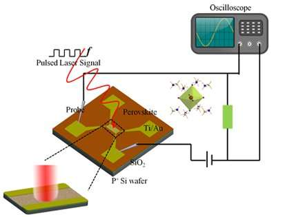 Researchers propose new gas-solid reaction for high-speed perovskite photodetector