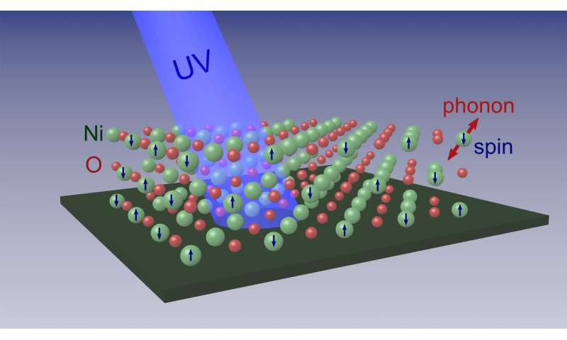 Research team determines how electron spins interact with crystal lattice in nickel oxide