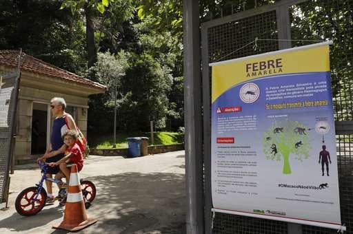 Sao Paulo shuts parks as yellow fever outbreak kills 70