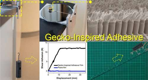 Scaling to new heights with gecko-inspired adhesive