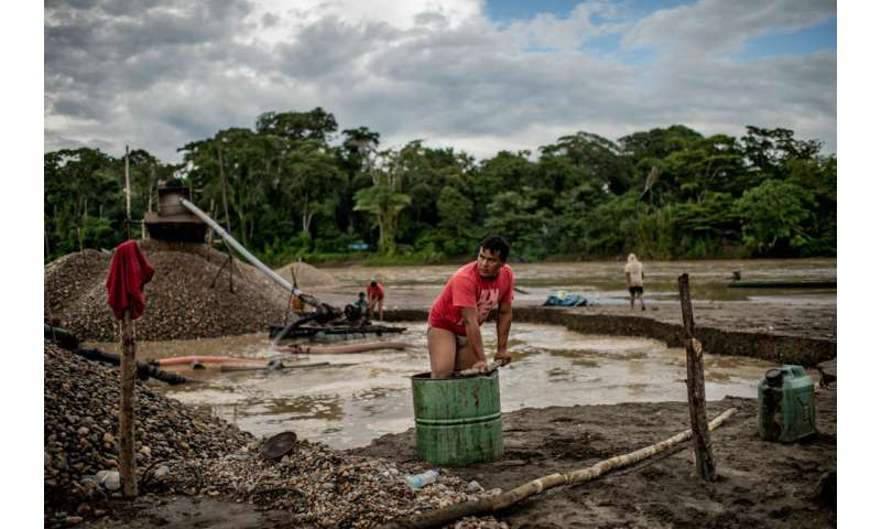 Scientists study mercury poisoning in Peruvian forest on pope's itinerary