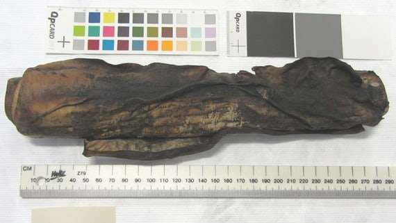 Scientists 'virtually unravel' burnt 16th century scroll