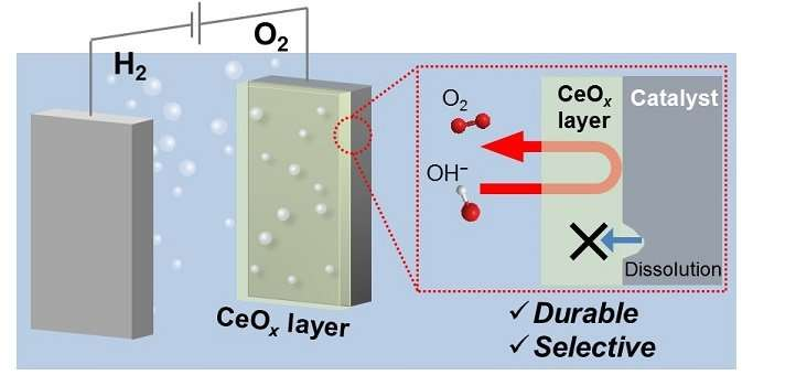 Shielding oxygen production to keep hydrogen coming
