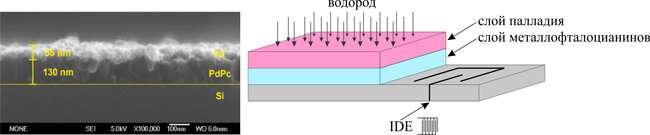 Siberian chemists have improved hydrogen sensors