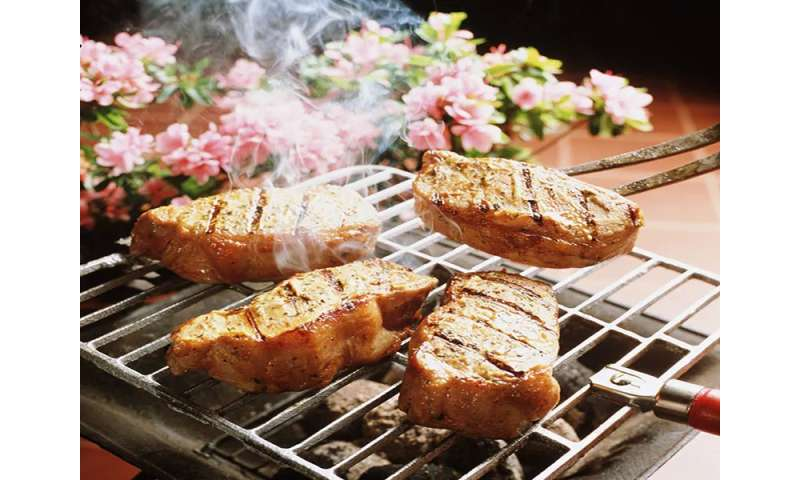 Skin appears to be key pathway for absorption of BBQ fumes