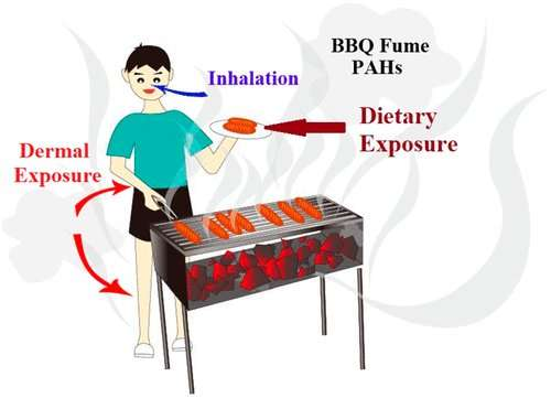 Skin responsible for greater exposure to carcinogens in barbecue smoke than lungs