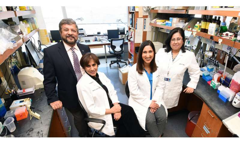 Small molecule plays a big role in reducing cancer's spread