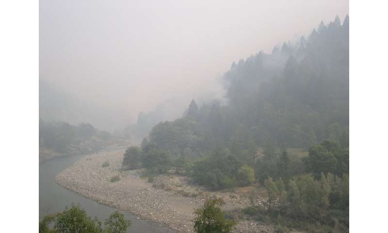 Smoke from wildfires has cooling effect on water temperatures