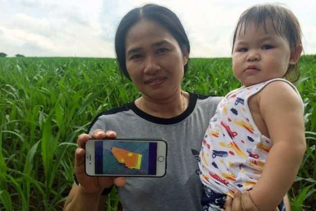 Social enterprise Ricult uses digital tools to empower rural farmers in developing countries.