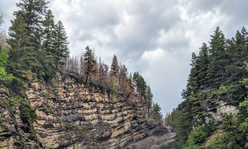 Soot-filled rivers mark the need for a national wildfire strategy