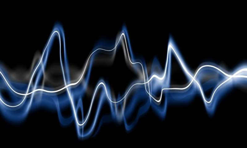 Sound waves in lipid films can annihilate each other upon collision