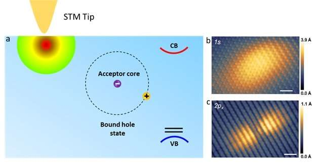 Spatial structure of bound hole states in black phosphorous