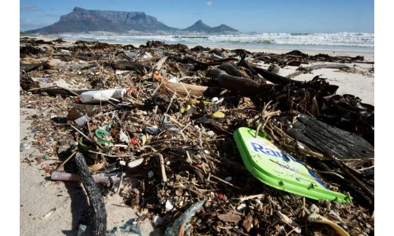 Spoiled seas: Plastic comprises most of the debris washed up on a beach near the South African city of Cape Town, whose fabled T