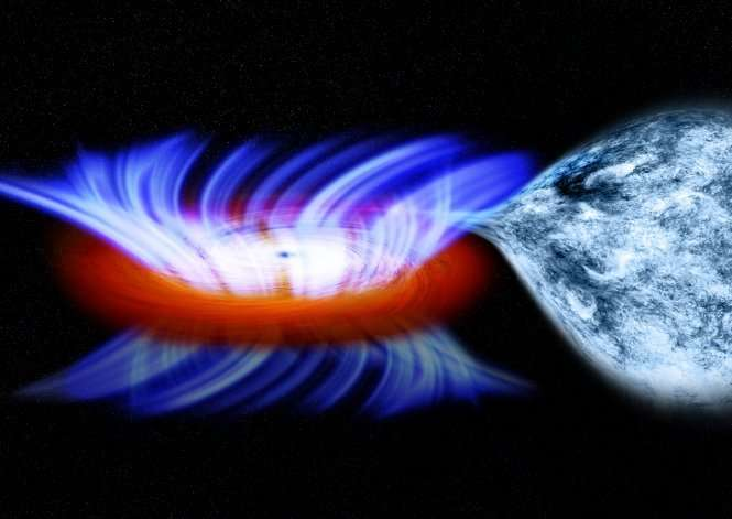 Stellar-Mass Black Hole