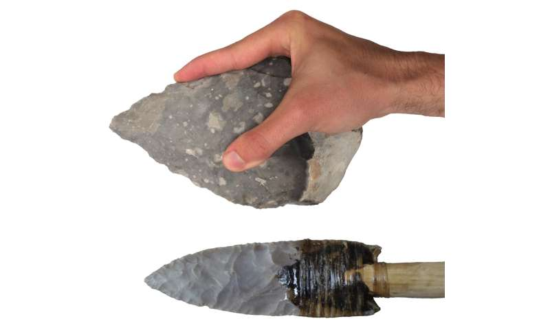 Stone tools reveal modern human-like gripping capabilities 500,000 years ago