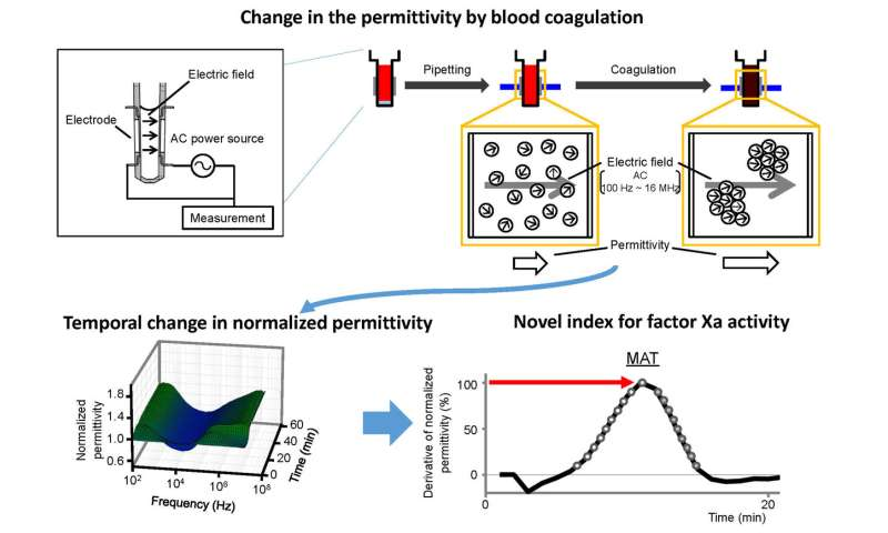 Stop that clot! Quantitative assessment of the blood coagulation cascade