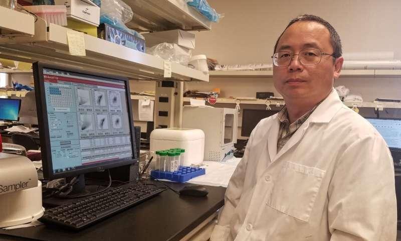 Study shows 'precision nutrition' may prevent non-alcoholic fatty liver disease