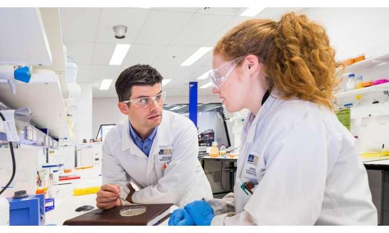 Study tracks inner workings of the brain with new biosensor