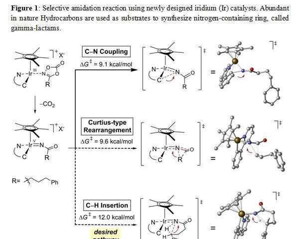 Successful synthesis of gamma-lactam rings from hydrocarbons