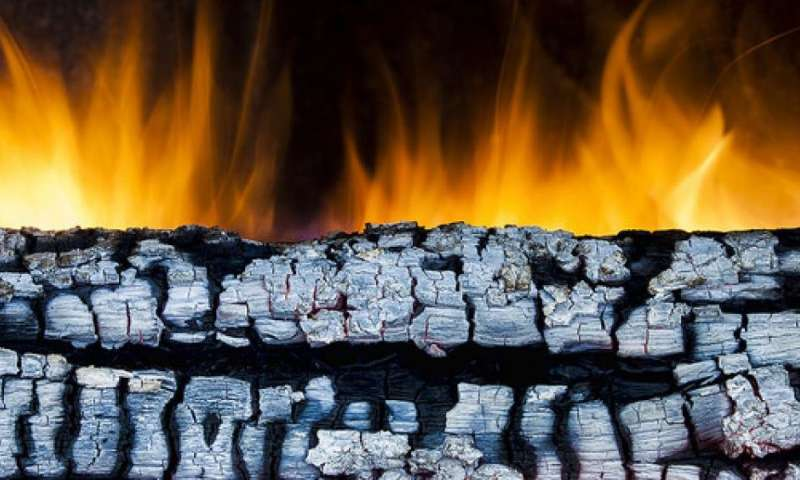 Swell Sweep Wood Ash From Fireplace To Garden Home Remodeling Inspirations Propsscottssportslandcom