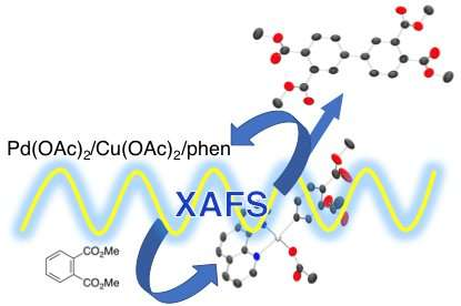 Synchrotron radiations shed light on formation mechanism of aromatic polyimide precursor