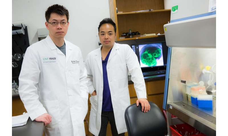 Team studying rare disorder discovers novel way to target melanoma