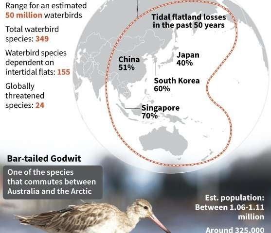 The East Asian-Australasian Flyway