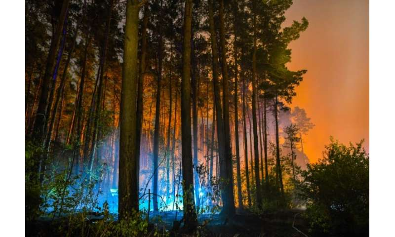 The fire as spread through as more than 400 hectares (1,000 acres) of woodland just half an hour's drive from Berlin