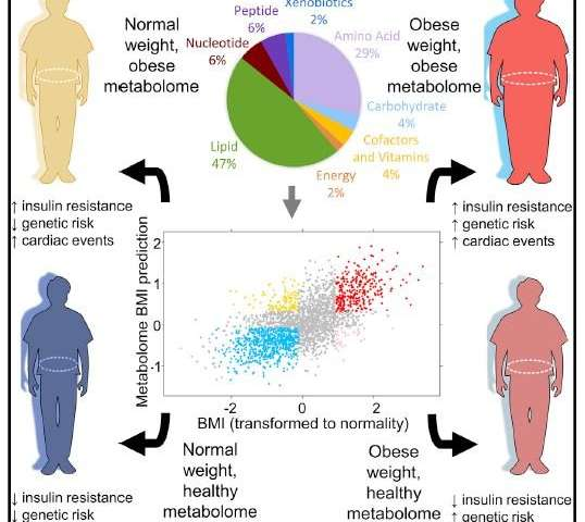 The metabolome: A way to measure obesity and health beyond BMI