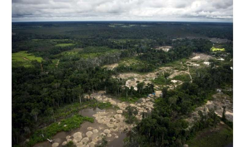 Peruvian Amazon Undergoing Deforestation At Accelerating Pace