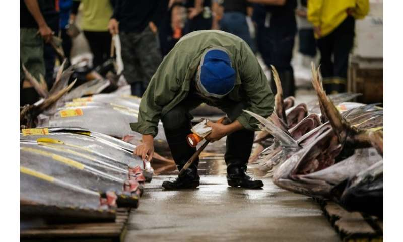 There were concerns about outdated fire regulations and hygiene controls at Tsukiji