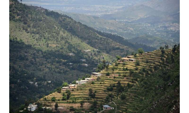 The Swat valley of Khyber Pakhtunkhwa in northwest Pakistan, where previously arid hills are now covered with forest as far as t