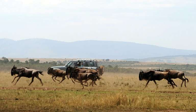 Tourism is now the second largest driver of growth in Kenya, home to some of the world's most visited safaris