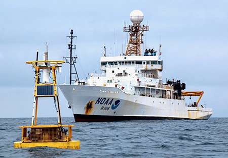 Tracking carbon from the ocean surface into the depths
