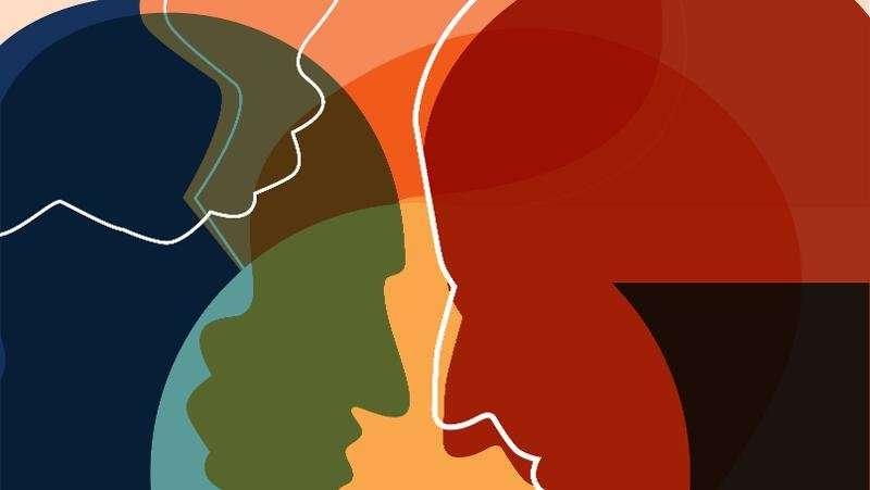 Treating domestic violence perpetrators