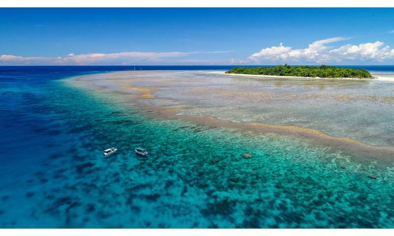 Tropical marine conservation needs to change as coral reefs decline