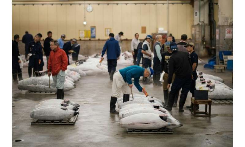Tsukiji's tuna auctions have regularly produced eye-watering prices, including a record 155.4 million yen ($1.8 million) paid fo
