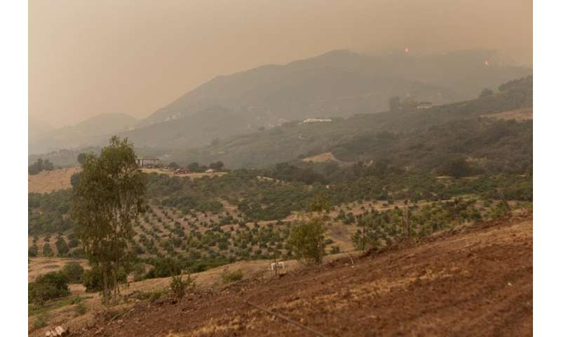 Tweets prove to be reliable indicator of air quality conditions during wildfires