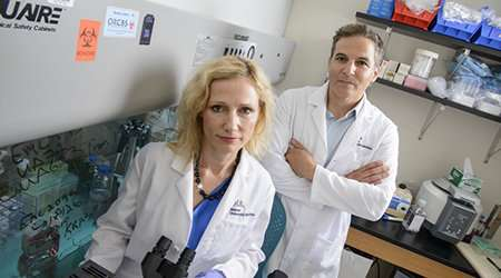 UA Cancer Center team targets tumor suppressor to treat 'triple-negative' breast cancer