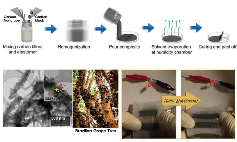 UNIST researchers develop highly stretchable aqueous batteries